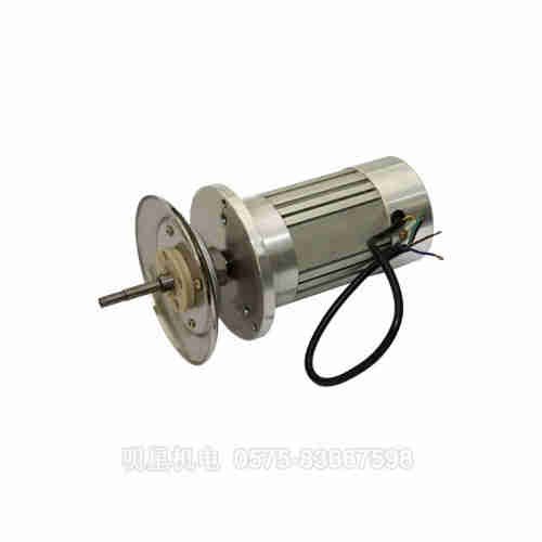 Start permanent magnet synchronous motor