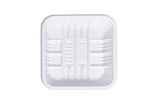 Biodegradable Rectangle Fresh Food Tray