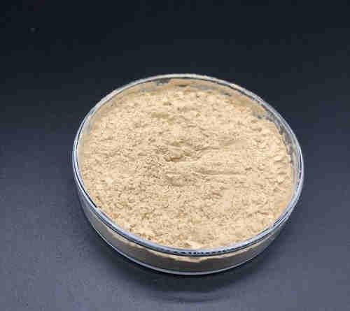 ProBC-123(Bacillus Coagulans)