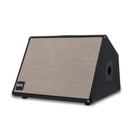 Dual 8 Inch Live Portable Speaker with Guitar Function with Mesh