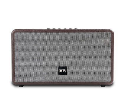 Bluetooth live Speaker dual portable speaker for indoor party
