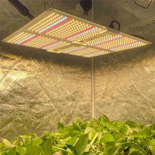 Waterproof LED Grow Light for Indoor Plant  vertical farming led lighting