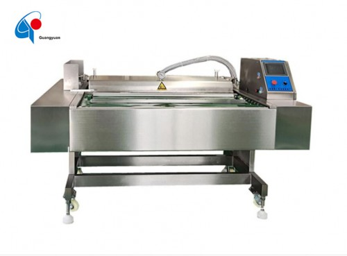Continuous Belt Type Vacuum Packing Machine