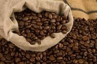 Arabica Coffee Beans and Robusta Coffee Beans