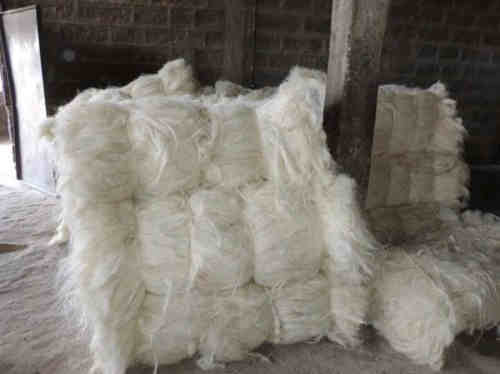 DRY SALTED DONKEY HIDES WITH HEADS,EARS,TAILS,LIMPS
