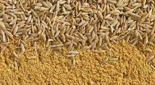 Top Offer Quality Cumin Seed For Export!