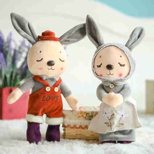 Fresh and lovely couple rabbit